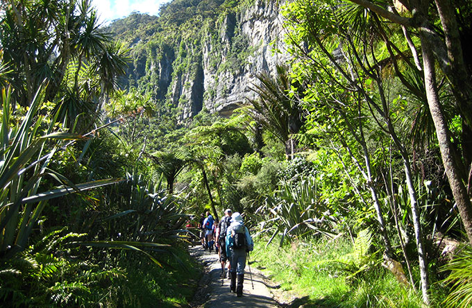 Hiking Tour in New Zealand