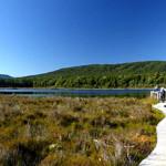 Kepler Track Wetlands