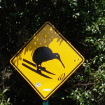 Great Walks New Zealand and Popular Tracks
