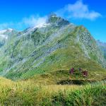 MacKinnon Pass South Island