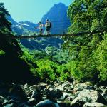 Swing bridge Arthurs Valley