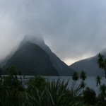 New Zealand Great Walks Information, Hiking, Packing & Safety Tips