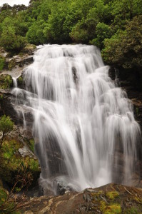 Another waterfall on the Milford Track