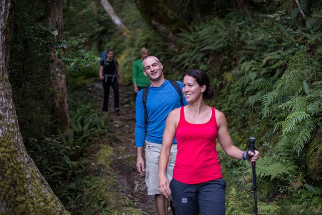 Great Walks in New Zealand and Other Popular Tracks
