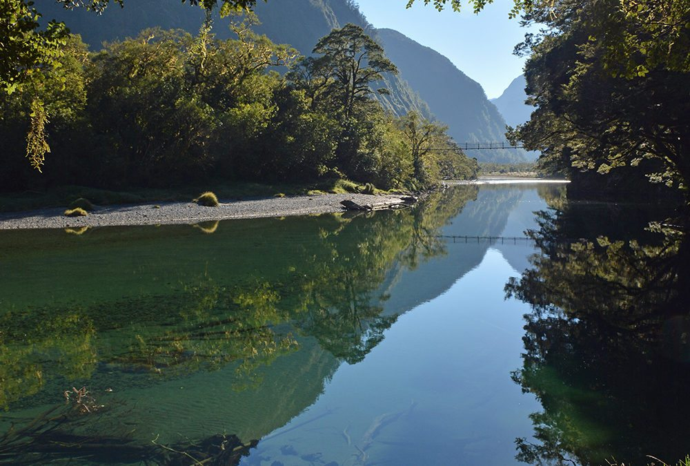 Reviews About the Milford Track, and New Zealand More Broadly